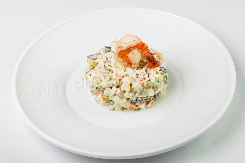 Ελαφριά φυτική σαλάτα με τη στρογγυλή μορφή και σάλτσα στην κορυφή με το shr στοκ εικόνες με δικαίωμα ελεύθερης χρήσης
