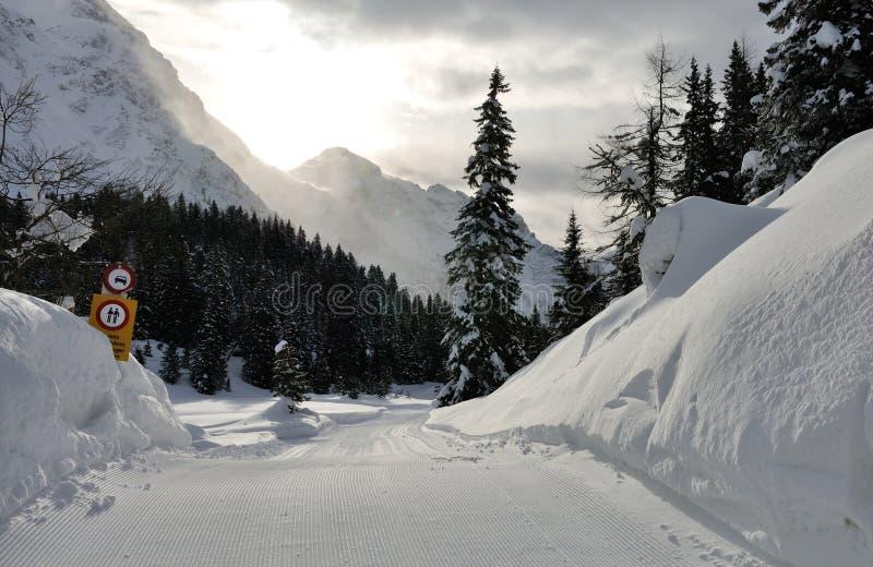 Ελβετικά τοπίο και σήμα ορών στοκ εικόνες με δικαίωμα ελεύθερης χρήσης