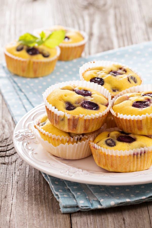 Ελεύθερα muffins γλουτένης με τα σταφύλια στοκ φωτογραφίες με δικαίωμα ελεύθερης χρήσης