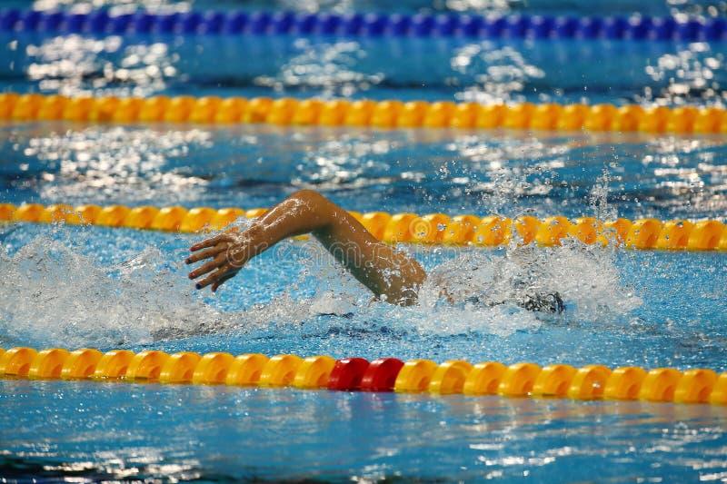 Ελεύθερος κολυμβητής ύφους στη δράση στοκ εικόνες