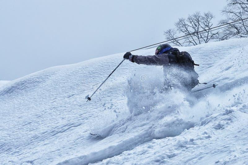 Ελεύθερος στο χιόνι σκονών στοκ εικόνες με δικαίωμα ελεύθερης χρήσης