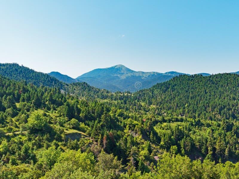 Ελληνικά βουνά, πράσινο τοπίο στοκ φωτογραφίες με δικαίωμα ελεύθερης χρήσης