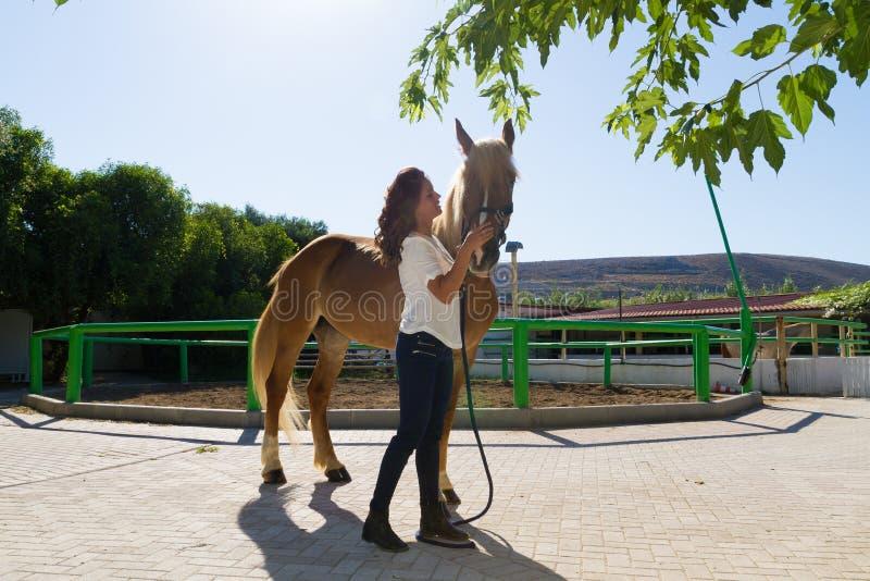 Ελκυστική νέα γυναίκα που καλλωπίζει ένα άλογο στοκ εικόνες