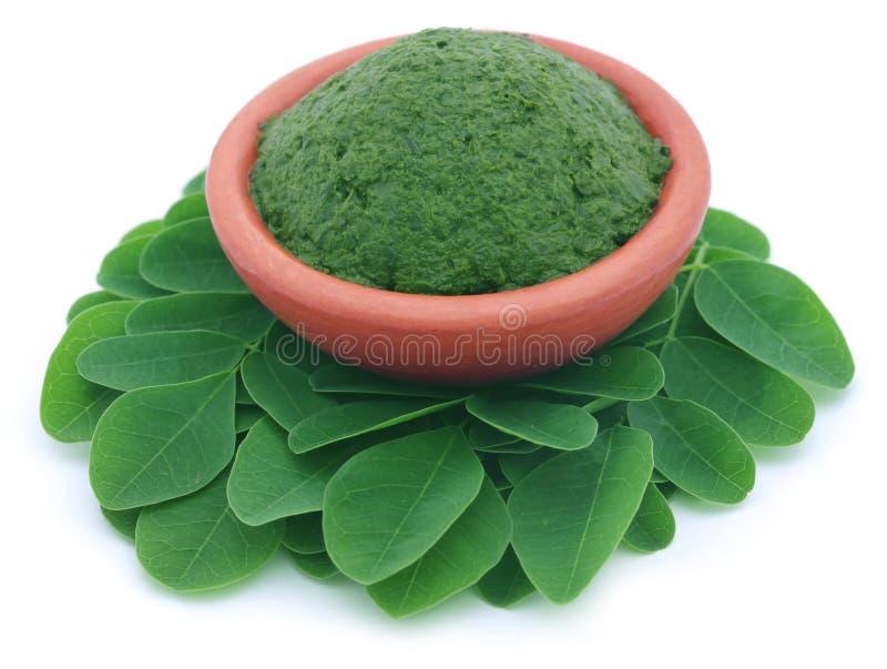 Εδώδιμα moringa φύλλα με τους πολτοποίηες αυτούς σε μια αγγειοπλαστική στοκ φωτογραφία με δικαίωμα ελεύθερης χρήσης
