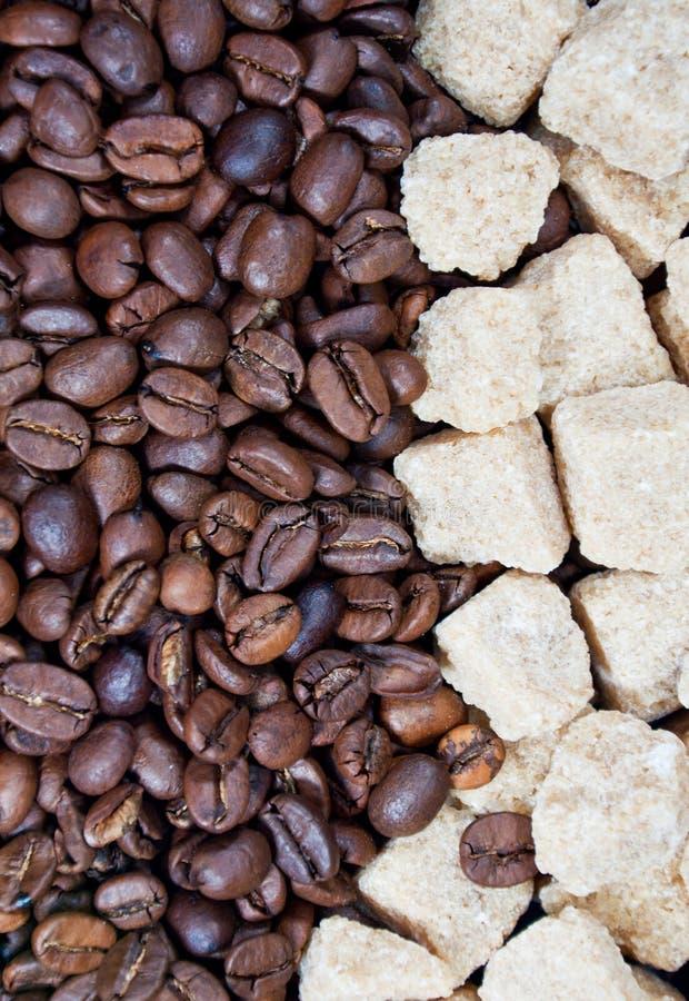 ζάχαρη καφέ καλάμων φασολ&iot στοκ εικόνες με δικαίωμα ελεύθερης χρήσης