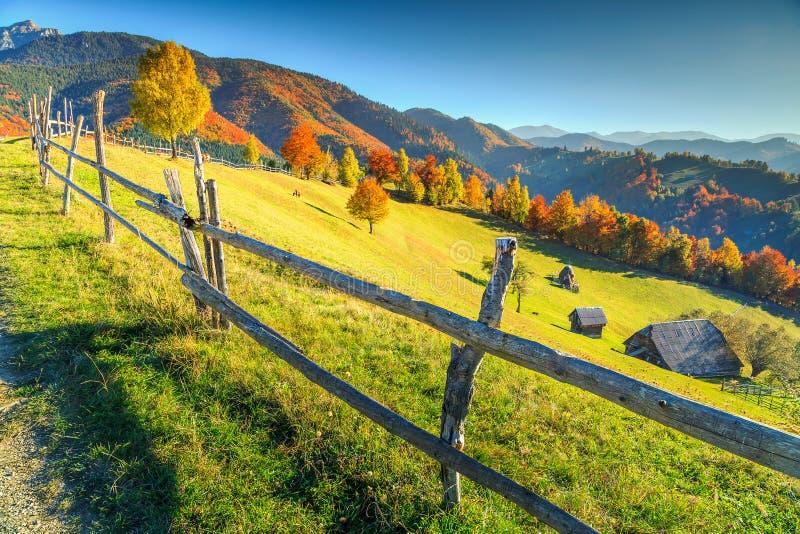 Ζάλη του αγροτικού τοπίου φθινοπώρου κοντά στο πίτουρο, Τρανσυλβανία, Ρουμανία, Ευρώπη στοκ εικόνες με δικαίωμα ελεύθερης χρήσης