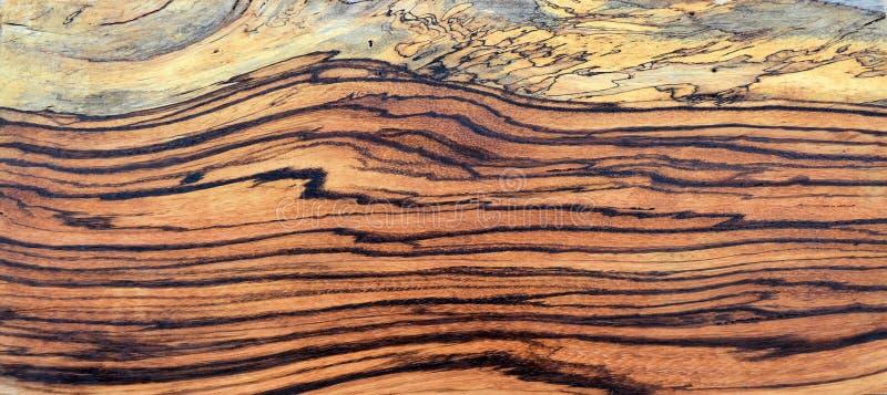Ζέβρα ξύλινη επιτροπή Spalted στοκ εικόνες με δικαίωμα ελεύθερης χρήσης