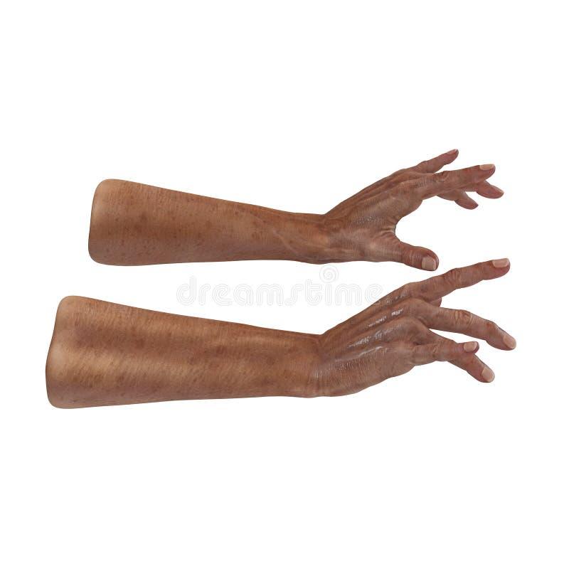 Ζαρωμένος στο παλαιό δέρμα χεριών ατόμων στο λευκό τρισδιάστατη απεικόνιση διανυσματική απεικόνιση