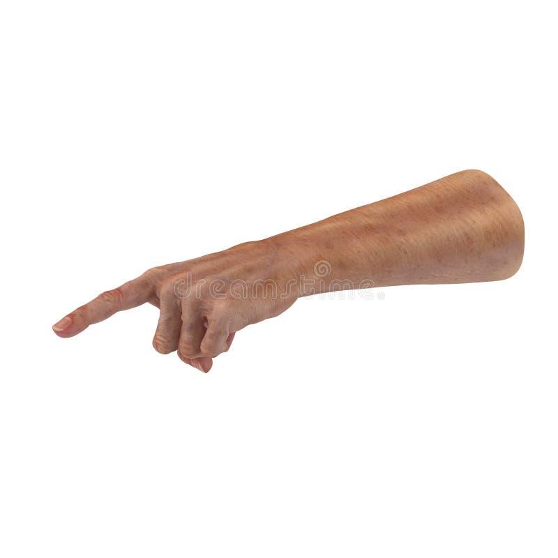 Ζαρωμένος στο παλαιό δέρμα χεριών ατόμων στο λευκό τρισδιάστατη απεικόνιση απεικόνιση αποθεμάτων
