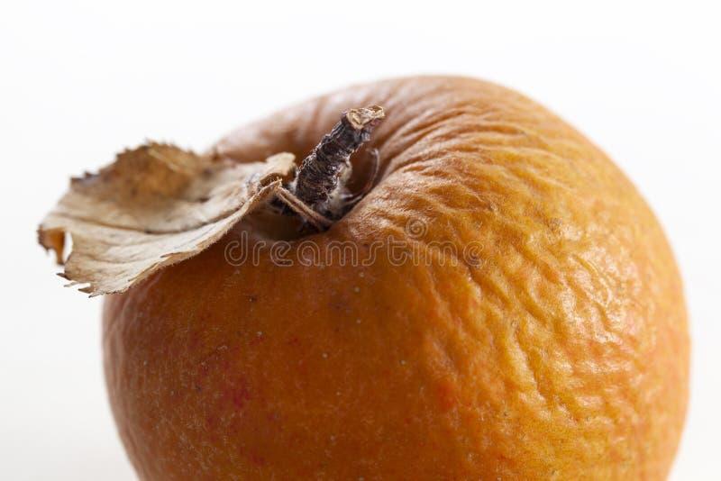Ζαρωμένο μήλο το φθινόπωρο στοκ φωτογραφίες