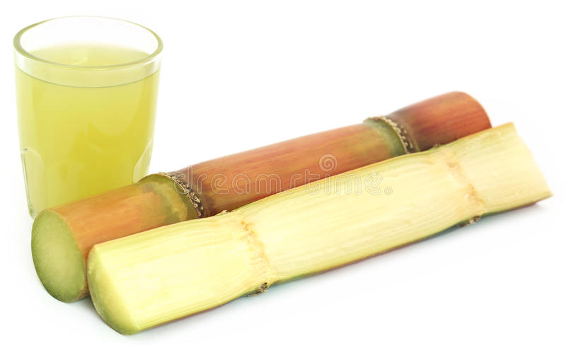 Ζαχαροκάλαμο με το χυμό στοκ εικόνες