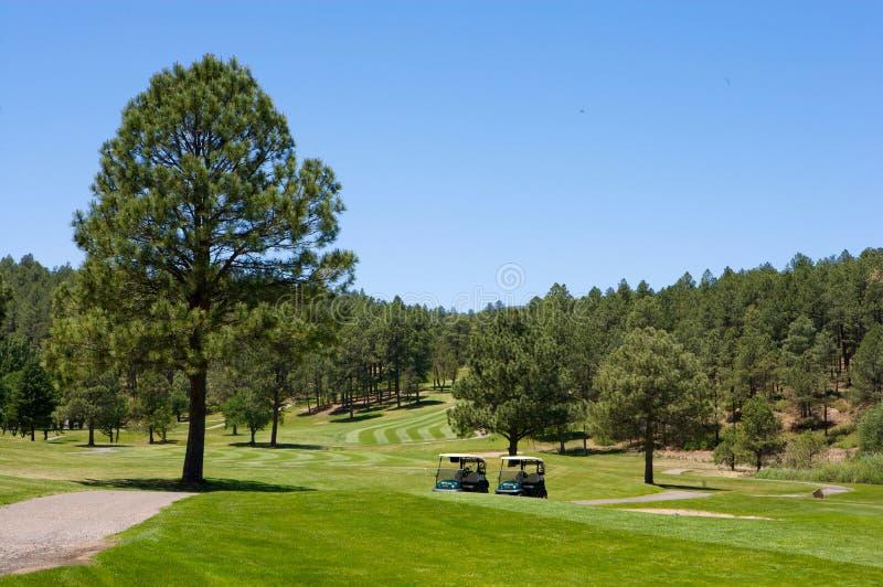 ζευγάρι γκολφ σειράς μαθημάτων κάρρων της Αριζόνα στοκ εικόνες με δικαίωμα ελεύθερης χρήσης