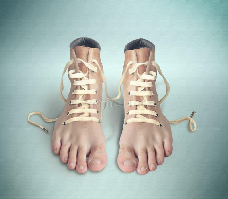 Download Ζευγάρι παπούτσια απεικόνιση αποθεμάτων. εικονογραφία από ενώστε - 62714392