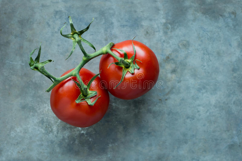 Ζευγάρι των κόκκινων ντοματών στοκ φωτογραφίες με δικαίωμα ελεύθερης χρήσης