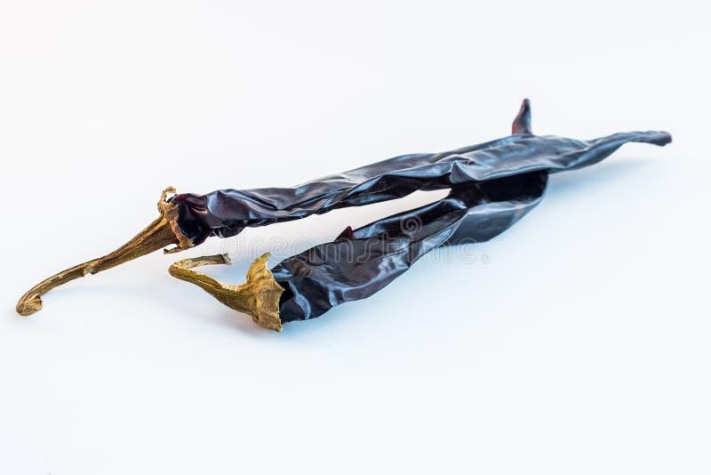 Ζευγάρι των ξηρών τσίλι στοκ εικόνα