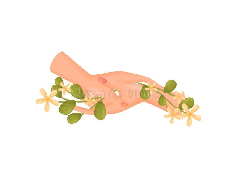 Ζευγάρι των χεριών που κρατά τους μίσχους με την κινηματογράφηση σε πρώτο πλάνο λουλουδιών E διανυσματική απεικόνιση
