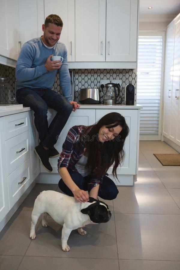 Ζεύγος που έχει τη διασκέδαση με το σκυλί κατοικίδιων ζώων τους στην κουζίνα στοκ φωτογραφία