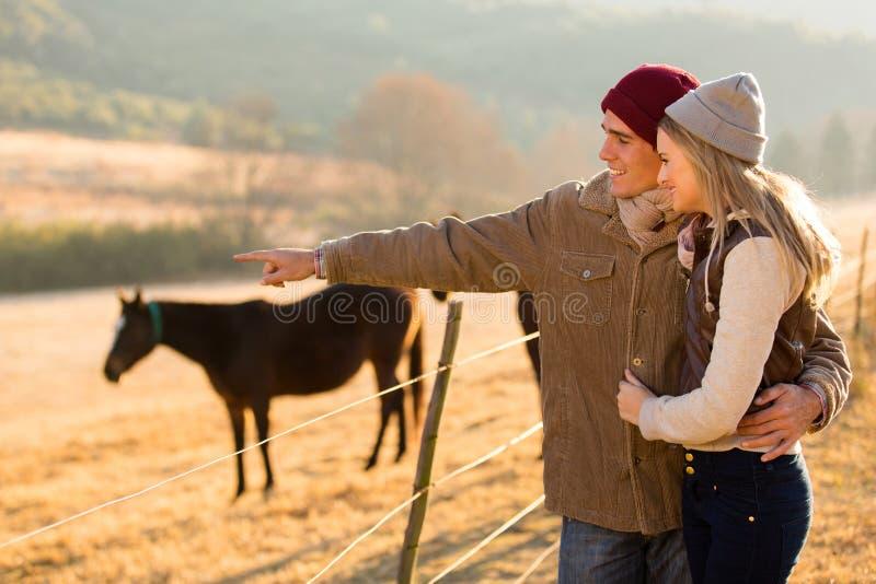 Ζεύγος που δείχνει το άλογο στοκ εικόνα