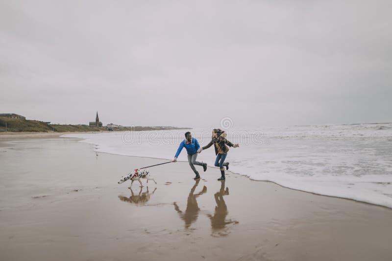 Ζεύγος που οργανώνεται νέο κατά μήκος της χειμερινής παραλίας με το σκυλί τους στοκ εικόνα με δικαίωμα ελεύθερης χρήσης