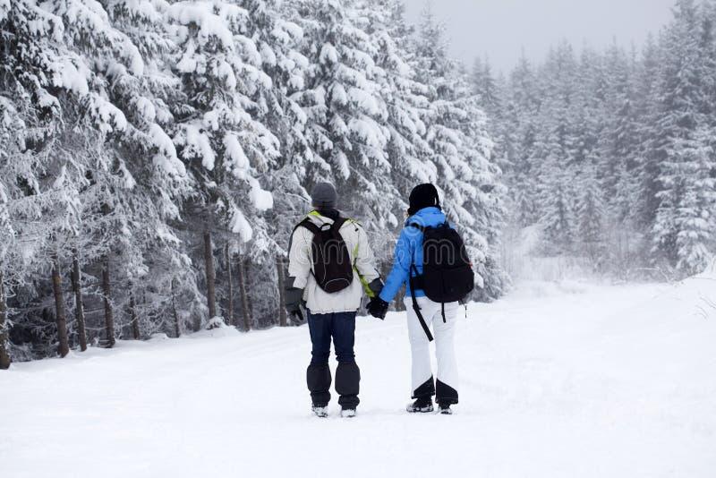 Ζεύγος που περπατά στη χιονισμένη πορεία στοκ εικόνες