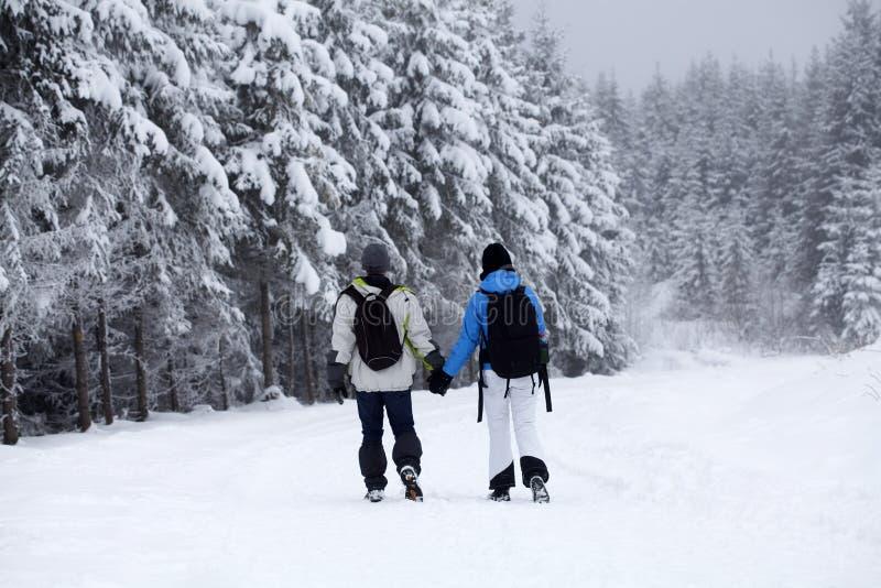 Ζεύγος που περπατά στη χιονισμένη πορεία στοκ φωτογραφία