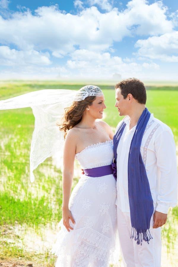 Ζεύγος στη ημέρα γάμου με τον αέρα στο πέπλο στοκ εικόνα με δικαίωμα ελεύθερης χρήσης