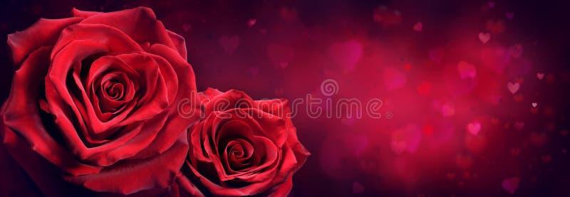 Ζεύγος των κόκκινων τριαντάφυλλων στη μορφή καρδιών διανυσματική απεικόνιση