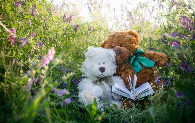Ζεύγος των χαριτωμένων teddy αρκούδων ερωτευμένων σε ένα ηλιόλουστο θερινό λιβάδι στοκ φωτογραφία με δικαίωμα ελεύθερης χρήσης