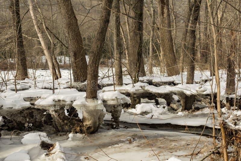 Ζημία πλημμυρών από μια μαρμελάδα πάγου στοκ εικόνα