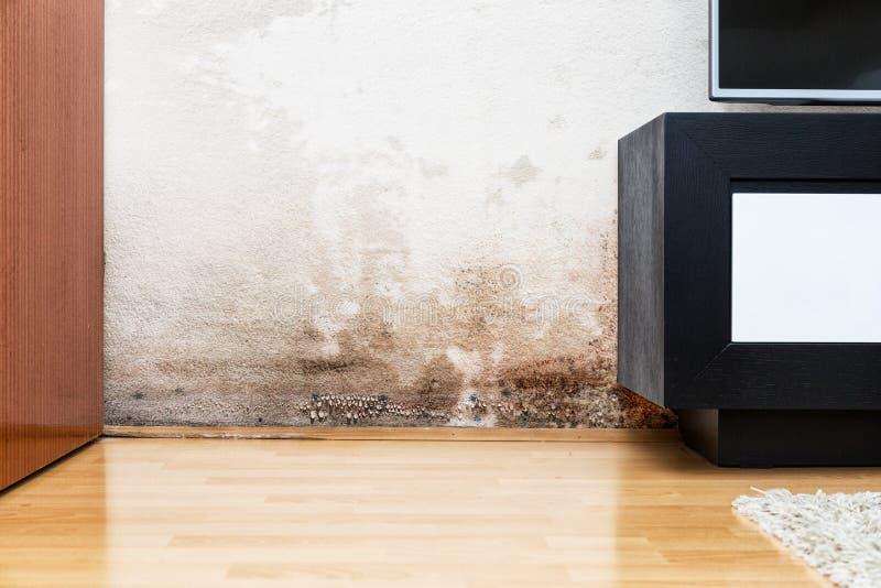 Ζημία που προκαλείται από την υγρασία σε έναν τοίχο στο σύγχρονο σπίτι στοκ φωτογραφίες με δικαίωμα ελεύθερης χρήσης