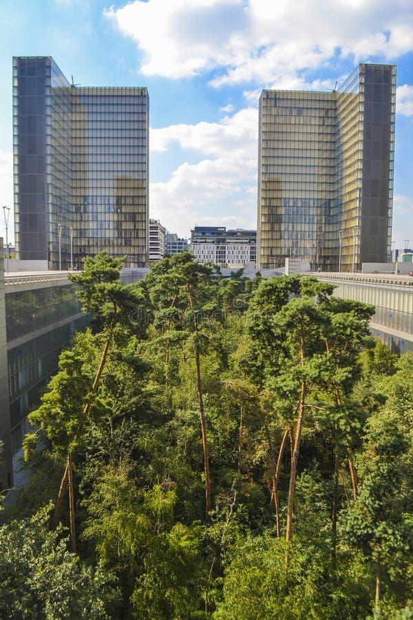 Ζούγκλα στην πόλη στοκ φωτογραφία με δικαίωμα ελεύθερης χρήσης
