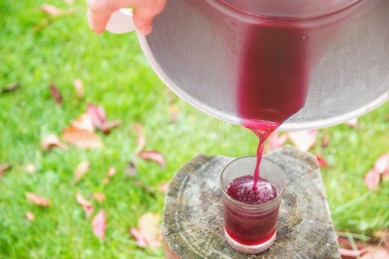 Ζυμωνομμένος χυμός φρούτων στοκ φωτογραφίες με δικαίωμα ελεύθερης χρήσης