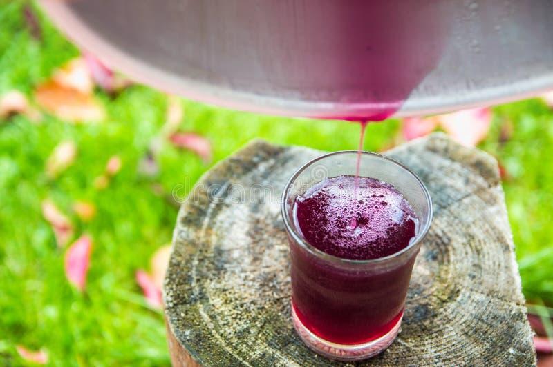Ζυμωνομμένος χυμός φρούτων στοκ φωτογραφίες