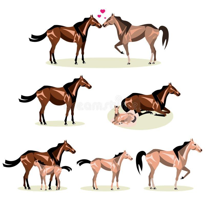 Ζωή αλόγων με όλα τα στάδια συμπεριλαμβανομένης της μητέρας γέννησης και foal του πουλαριού και του ενηλίκου ελεύθερη απεικόνιση δικαιώματος