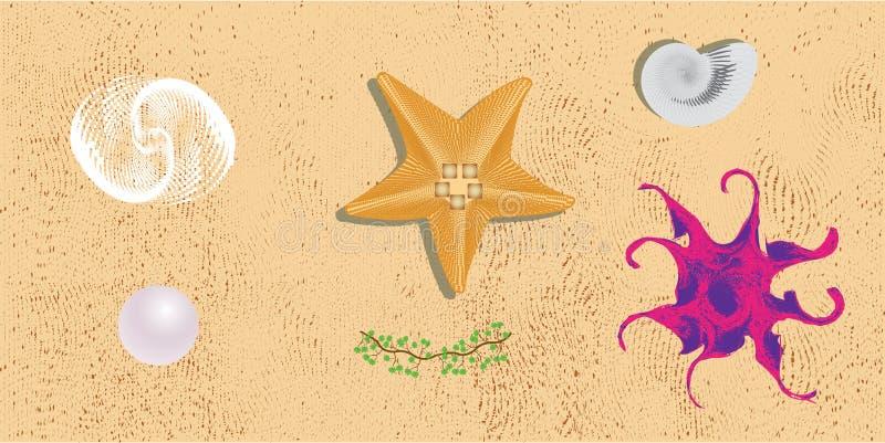 Ζωή θάλασσας Στοιχεία σχεδίου io η άμμος διανυσματική απεικόνιση