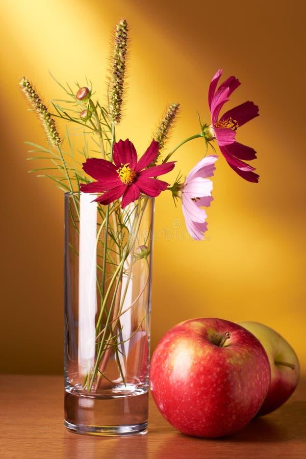 ζωή λουλουδιών μήλων ακόμ στοκ εικόνες με δικαίωμα ελεύθερης χρήσης