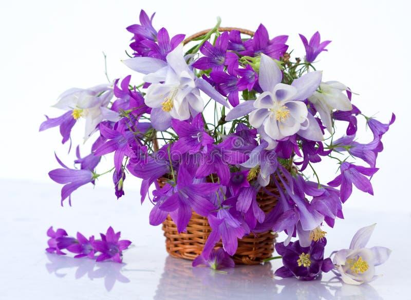 ζωή λουλουδιών ομορφιά&sigm στοκ φωτογραφία