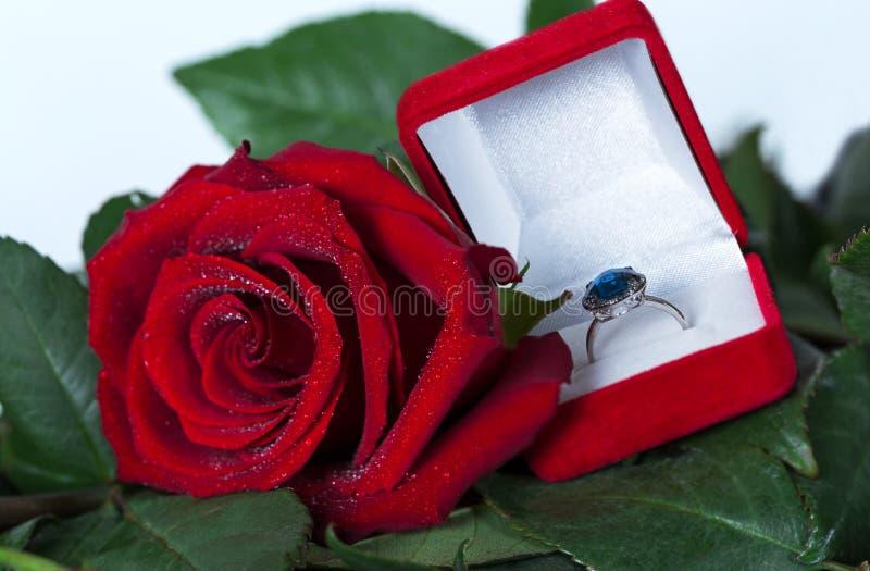 ζωή ρομαντική ακόμα Όμορφος μεγάλος κόκκινος αυξήθηκε λουλούδι και κιβώτιο με το δαχτυλίδι αρραβώνων με το σκούρο μπλε πολύτιμο λ στοκ εικόνα με δικαίωμα ελεύθερης χρήσης