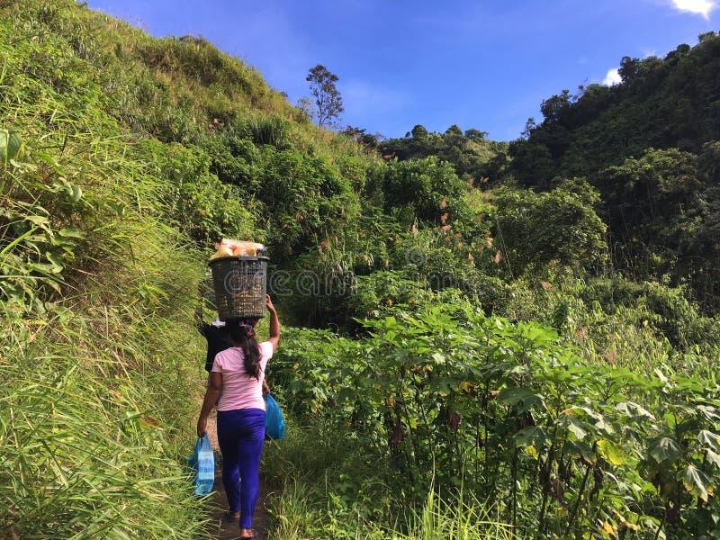 Ζωή στη φιλιππινέζικη ζούγκλα, φέρνοντας δοχείο γυναικών στο κεφάλι της στοκ φωτογραφία με δικαίωμα ελεύθερης χρήσης
