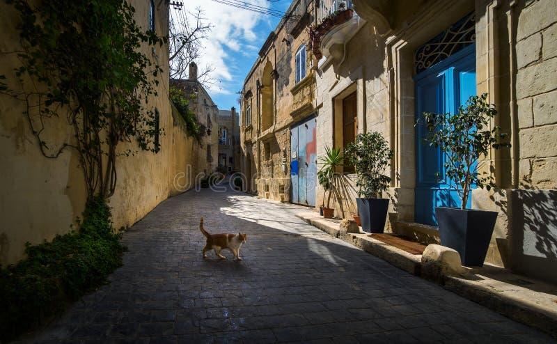 Ζωή στις οδούς Birgu valletta Μάλτα στοκ φωτογραφία με δικαίωμα ελεύθερης χρήσης