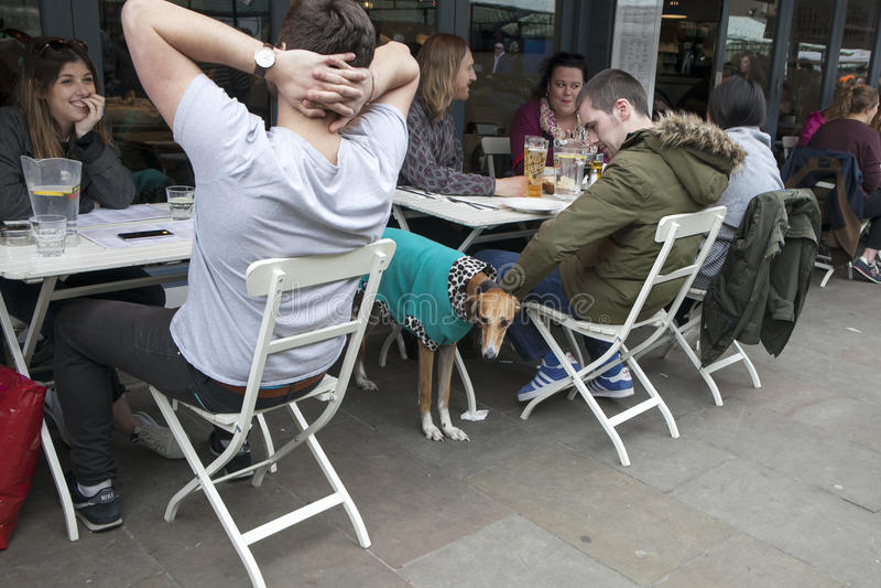Ζωή του καφέ οδών Σγουρό χαμογελώντας κορίτσι που μιλά με τους φίλους έξω από το φραγμό στοκ εικόνα με δικαίωμα ελεύθερης χρήσης