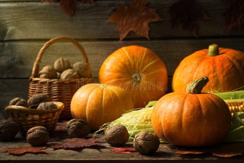 Ζωή φθινοπώρου ακόμα με τις κολοκύθες, καλαμπόκι, καρύδια στοκ φωτογραφίες