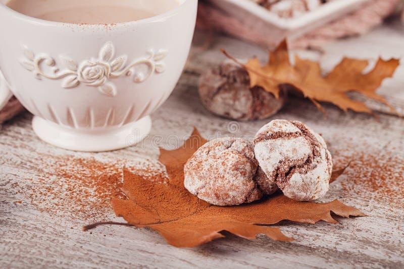 Ζωή φθινοπώρου ακόμα με το φλυτζάνι των μπισκότων κακάου και σοκολάτας στοκ φωτογραφίες με δικαίωμα ελεύθερης χρήσης