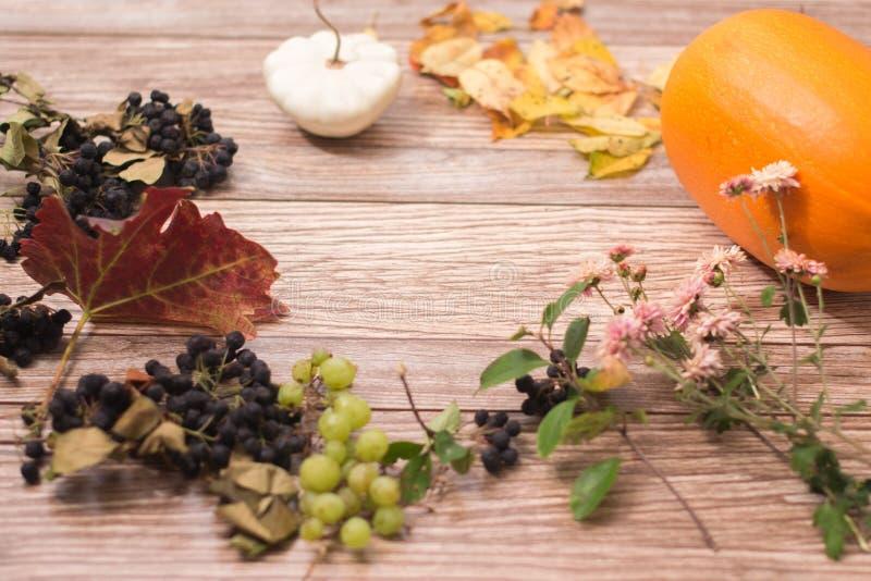Ζωή φθινοπώρου ακόμα: φύλλα κολοκύθας και φθινοπώρου σε ένα ξύλινο υπόβαθρο στοκ εικόνα με δικαίωμα ελεύθερης χρήσης
