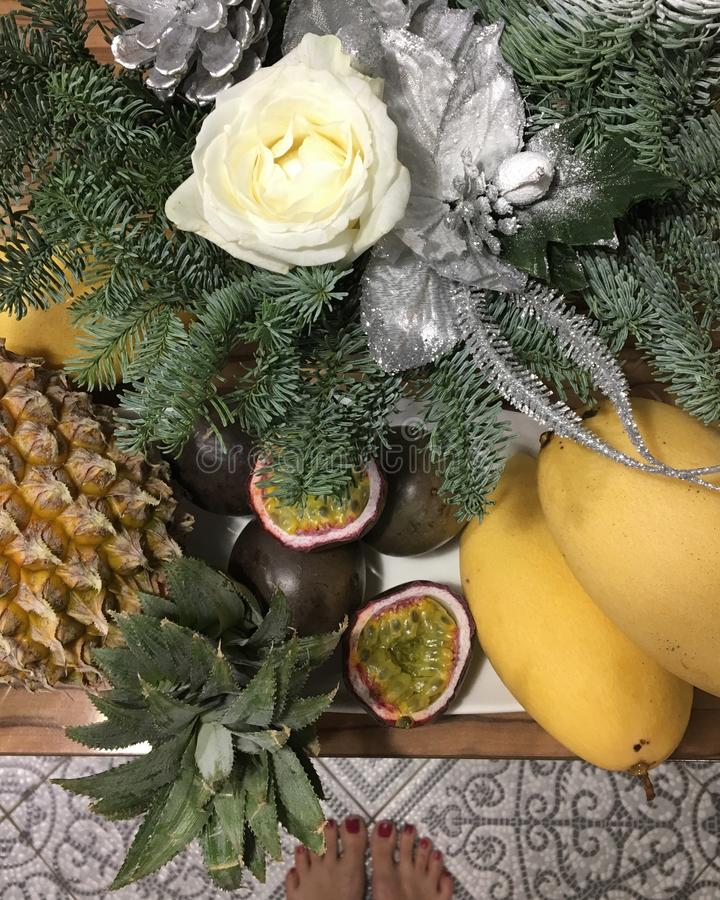 Ζωή Χριστουγέννων ακόμα των κλάδων και των φρούτων έλατου στοκ φωτογραφία με δικαίωμα ελεύθερης χρήσης