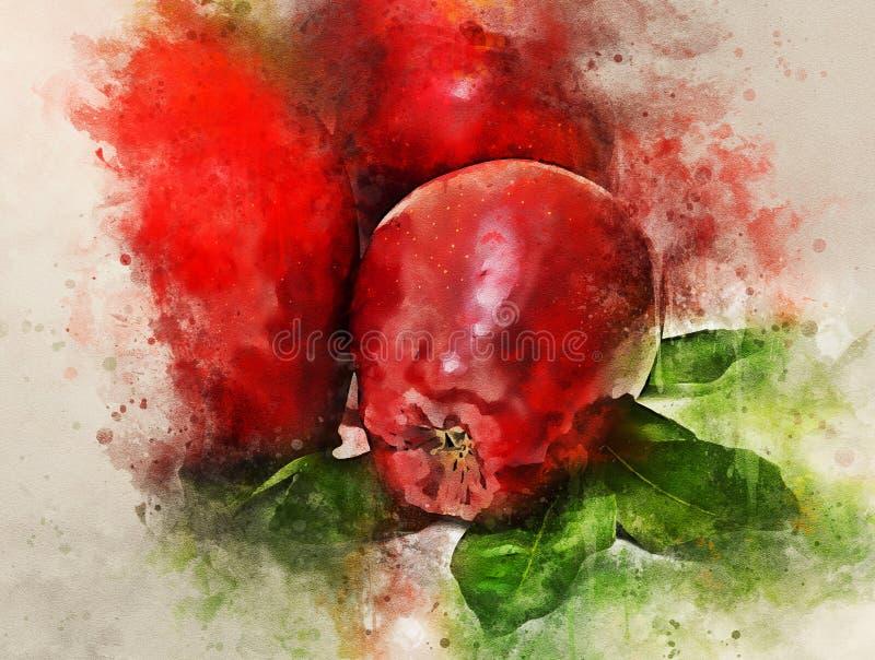 Ζωγραφική Watercolor των κόκκινων μήλων που απομονώνονται στο άσπρο υπόβαθρο απεικόνιση αποθεμάτων