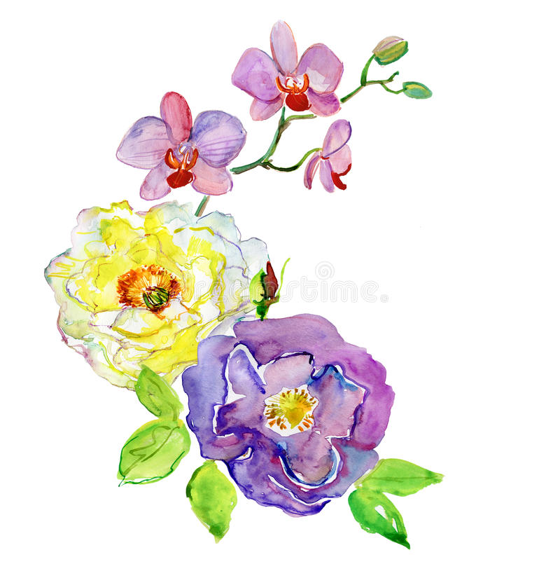 Ζωγραφική Watercolor των πράσινων φύλλων και των λουλουδιών διανυσματική απεικόνιση