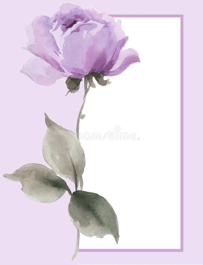 Ζωγραφική Watercolor όμορφο ενιαίο lavender ρ απεικόνιση αποθεμάτων