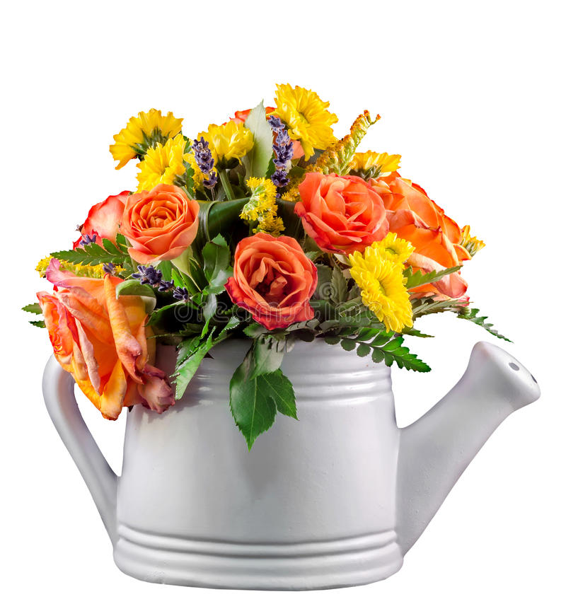 Ζωηρά χρωματισμένα λουλούδια, πορτοκαλιά τριαντάφυλλα, σε έναν άσπρο ψεκαστήρα, απομονωμένος, στενός επάνω στοκ εικόνα με δικαίωμα ελεύθερης χρήσης
