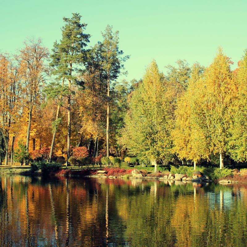 Ζωηρόχρωμα δέντρα φθινοπώρου που απεικονίζονται στη λίμνη στοκ εικόνες